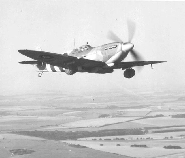 A historia dos Spitfire cervejeiros na Segunda Guerra Mundial Beer2OSH-Delivery